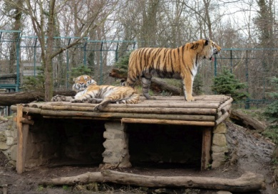 Zoo-Aschersleben