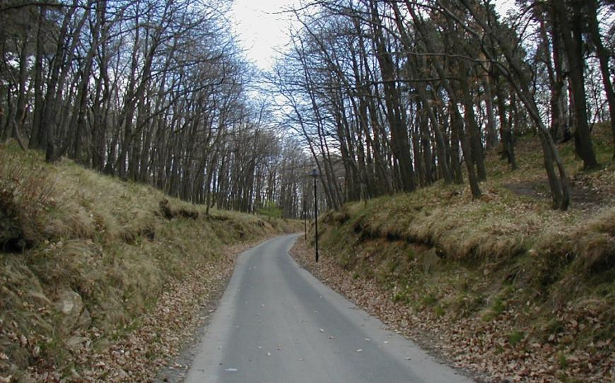 Aufgang zur Burg- und Festungsruine Regenstein. (Foto: 2003)