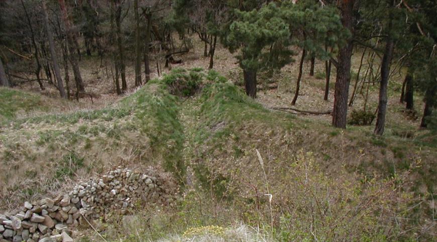 Festung Regenstein, Erdschanzen vor der Bastion Friederichsburg. (Foto:  April 2003)
