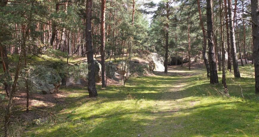 Sandhöhlen am Regenstein, nördlich an der alten Heerstraße gelegen.