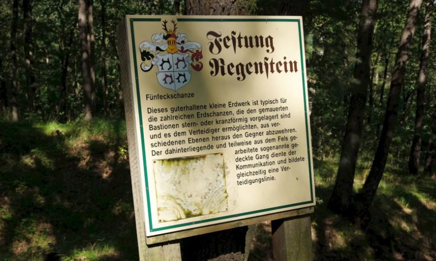 Festung Regenstein, Erdschanze an der Ludwigsburg.