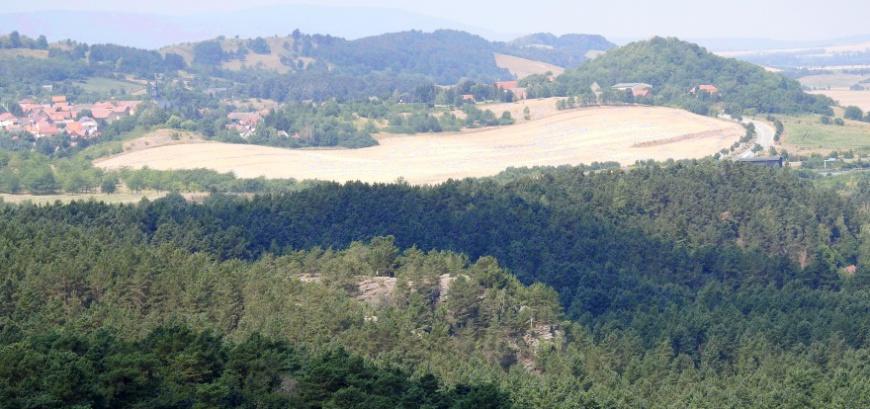Der Papenberg am Regenstein