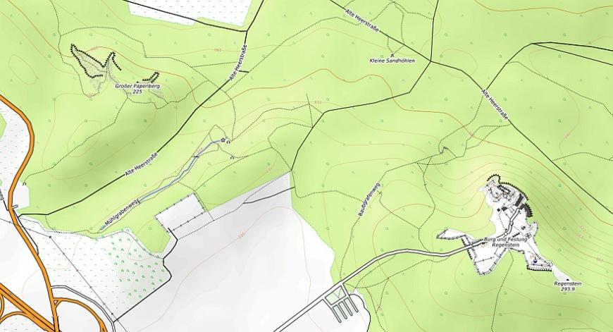 Der Papenberg am Regenstein (Karte erstellt aus OpenTopoMap.org)