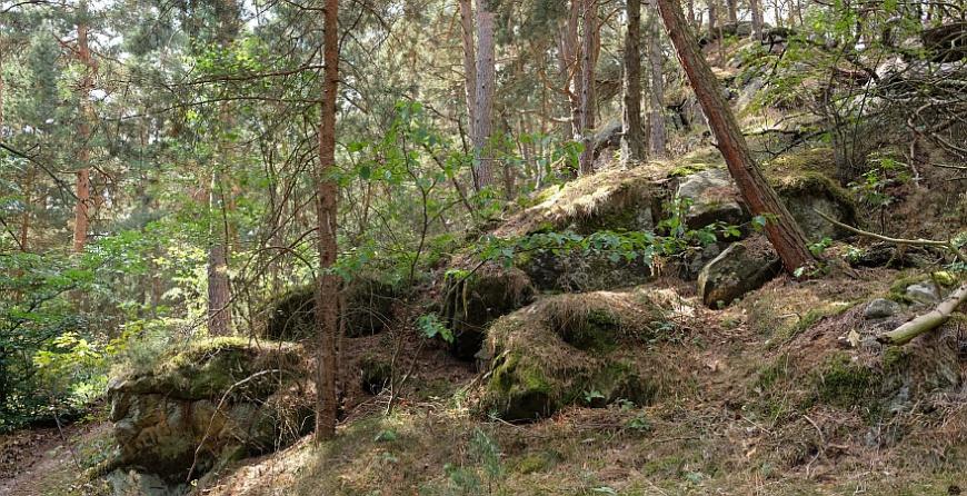Papenberg - östlicher Aufstieg