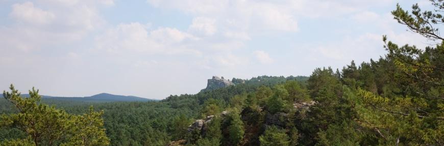 Burg Regenstein vom Papenberg aus gesehen.