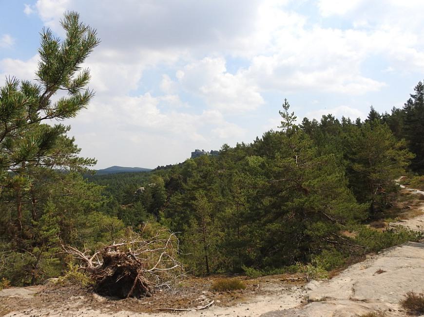 Auf dem Plateau des Großen Papenberges