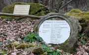 Regensteinmühle, Reste eines Mühlsteins.